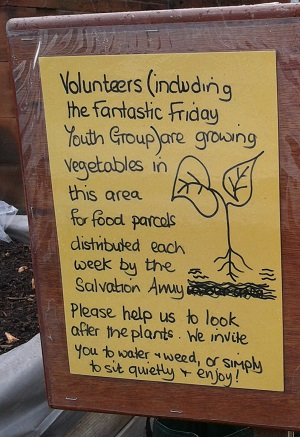 Please help at the raised beds in Penrith